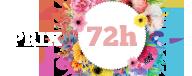 Logo 72h - 1ère édition