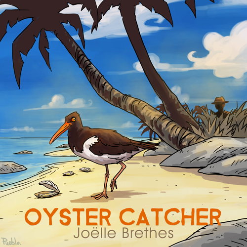 Image de Oyster Catcher