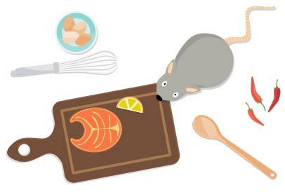 Rencontre inattendue d'une souris