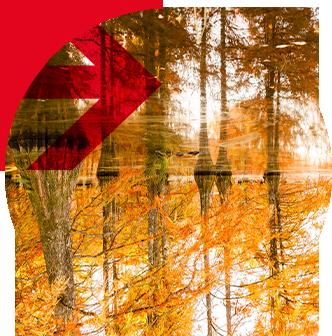 logo paysage>paysages